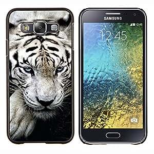 EJOOY---Cubierta de la caja de protección para la piel dura ** Samsung Galaxy E5 E500 ** --Big White Tiger Stripes Albino Wild Blue Eyes