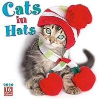 Amazon Best Sellers: Best Cat Calendars