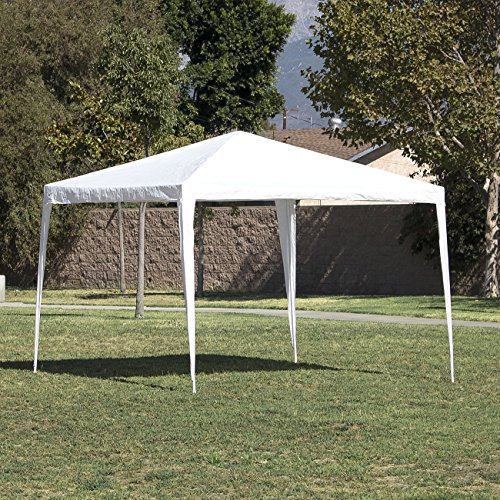 10'x10' White Outdoor Canopy Party Wedding Tent Gazebo Pavilion Event Cater BBQ - Steel Vending Truck