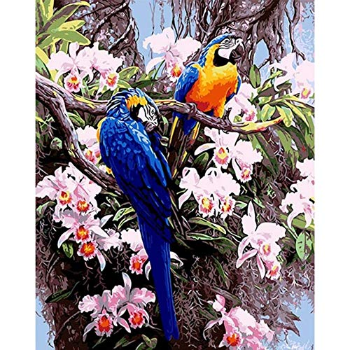 - RYUANYUAN Hand Oil Painting Flowers Parrot Decorative Linen Painting Mirrors Wall Art for Living Room 16x20 inch (40x50 cm) Unframed