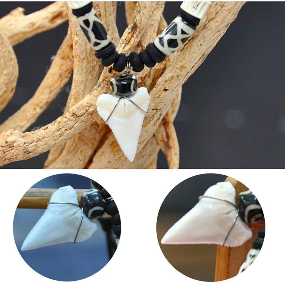 Pendentif Colliers De Mode Sp/écial Naturel Dents De Requin Collier Dents De Requins Dent Pendentif Collier Chandail Cintre Accessoires