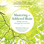 Mastering the Addicted Brain: Building a Sane and Meaningful Life to Stay Clean | Walter Ling MD,Alan I. Leshner - foreword