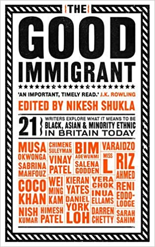 Image result for the good immigrant