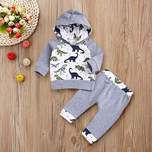 Pullover Bibs for Boys,Infant Baby Boys Girls Cartoon Dinosaur Hooded Tops Pullover Pants Outfits Set,Fashion Hoodies & Sweatshirts,Gray,100 -