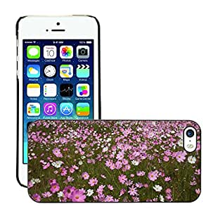Print Motif Coque de protection Case Cover // M00293077 Cosmos flores Campo de flores // Apple iPhone 5 5S 5G