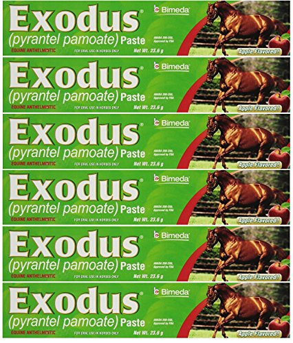 BIMEDA Pyrantel Paste Horse 23.6g wormer Equine Parasite Exodus (Pamoate Strongid) OTC 6 Pack