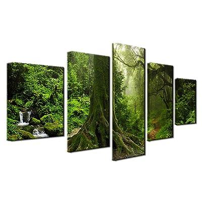 5 Piezas De Bosque Verde Lienzo Arte De Pared Árboles Naturaleza Imagen Lienzo Moderno Arte Contemporáneo Bosque Musgo Roca Primavera Temporada Impresiones Para Decoración Del Hogar: Bricolaje y herramientas