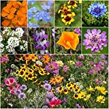 Bulk Package of 30,000 Seeds, Low Growing Wildflower Mixture (99% Pure Seed) Non-GMO Seeds by Seed Needs