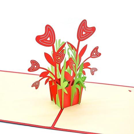 medigy 3d Pop Up Tarjetas de felicitación en blanco tarjetas para más occastions (Flower Pot