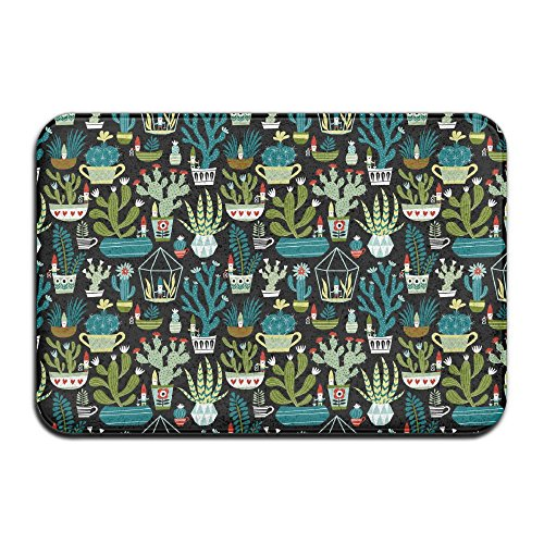 Gnome Mat (Gnomes Succulents Cacti Terrarium Door Mats Indoor Bathroom Kitchen Decor Mat Welcome Doormat)