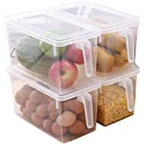 SAMPLUS MALL (LABEL) Pack of 2 Plastic Storage Containers Square Handle Food Storage Organizer Boxes with Lids for Refrigerator Fridge Cabinet Desk