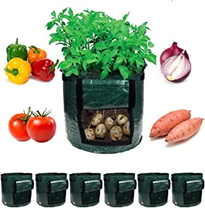 Garden4Ever Potato Planter Bags 6-Pack 10 Gallon Grow Bags Aeration Tomato Plant Pots Container with Flap and Handles