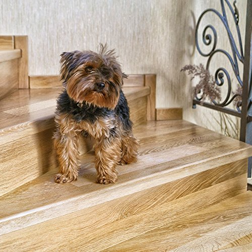 Kenley Non-Slip Stair Treads for Dogs and Pets - Pack of 4 Clear Step Strips 6''x24'' - Indoor & Outdoor - Anti-Slip Floor Vinyl Safety Grip Tape with Adhesive for Steps & Stairs - Fall Risk Prevention by Kenley (Image #2)