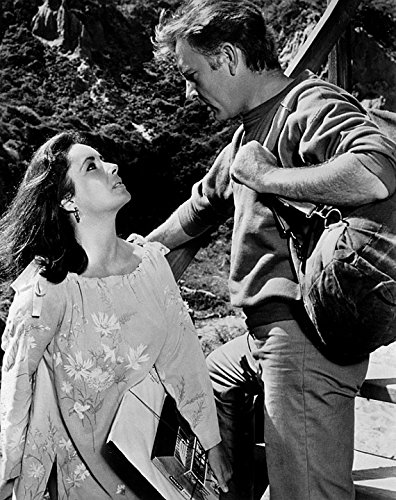 Home Comforts LAMINATED POSTER Elizabeth Taylor Richard Burton Actor Actress Poster 24x36 Decal (Richard Burton Actor)
