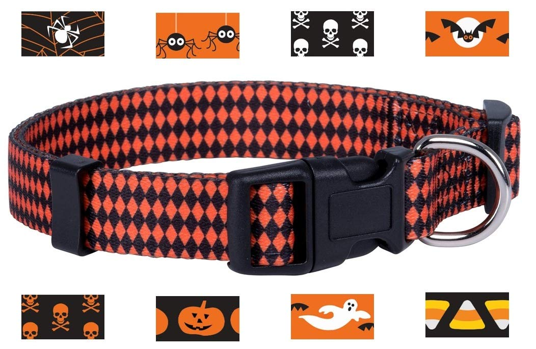 Native Pup Halloween Dog Collar (Medium, Argyle)