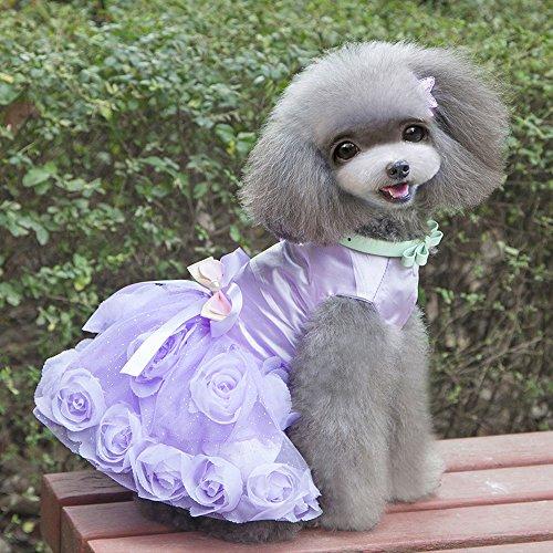 [Baiyu Rose Flower Lace Dog Clothes Pet Puppy Small Dog Cat Bowknot Tutu Princess Skirt Dress Apparel--Purple Size] (Halloween Costume Wearing Overalls)