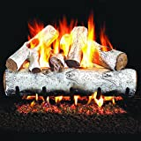Peterson Real Fyre 24-inch White Birch Gas Log Set With Vented Natural Gas G45 Burner - Manual Safety Pilot