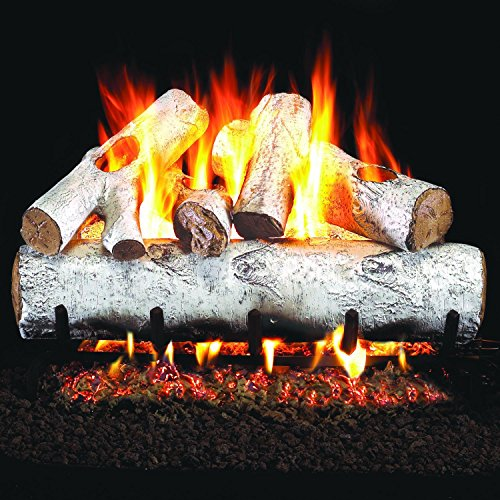 Peterson Real Fyre 18-inch White Birch Gas Log Set With Vented Natural Gas G4 Burner - Manual Safety Pilot (Pilot Kit Safety Manual)