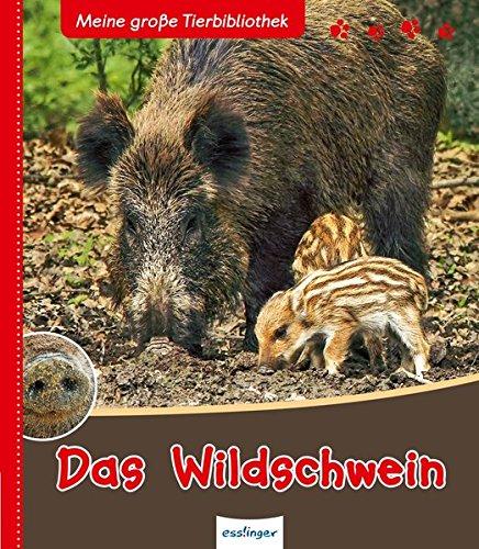 Meine große Tierbibliothek: Das Wildschwein