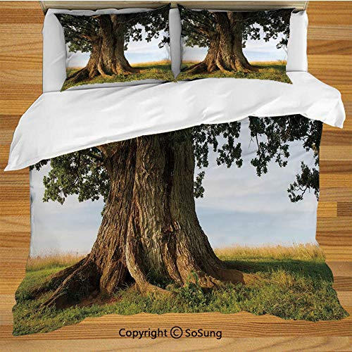 Nature King Size Bedding Duvet Cover Set,Majestic Oak Tree on Grass Estonia Northern Europe Rural in Summer Landscape Decorative 3 Piece Bedding Set with 2 Pillow Shams,Cocoa Fern Green