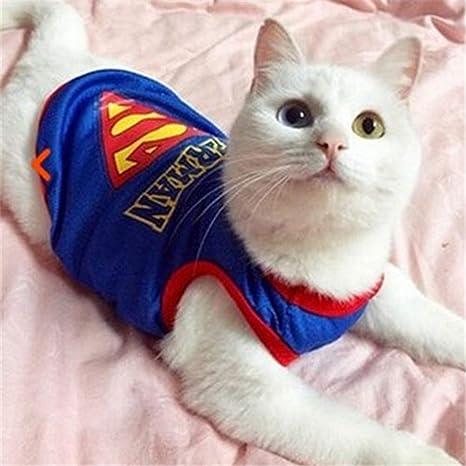 Feidaeu Divertido Gato Perro Ropa Enfermera Traje Traje para Cat ...
