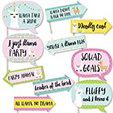 Funny Whole Llama Fun - Llama Fiesta Baby Shower or Birthday Party Photo Booth Props Kit - 10 Piece