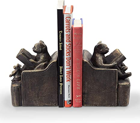 Amazon Com Spi Home Reading Friends Cat Mouse Bookends Pair Home Kitchen