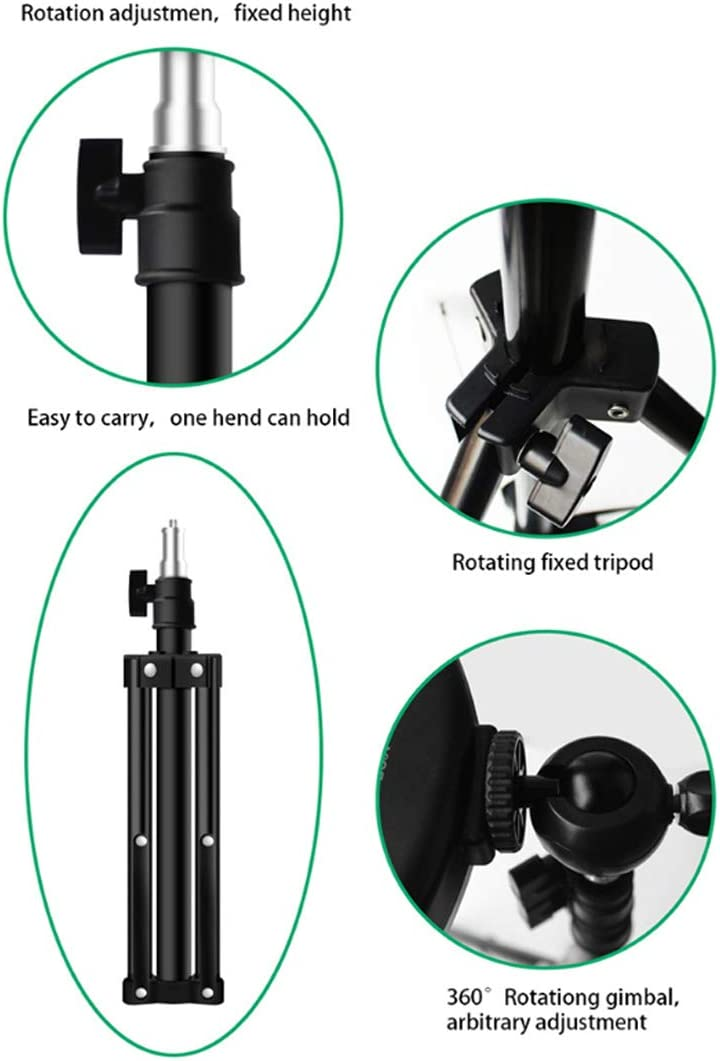 DLMPT Ring Make Up Light with Tripod Stand and Multifunction Phone Holders 3 Color Temperature Ringlight Make Up Light for Live Stream Makeup YouTube