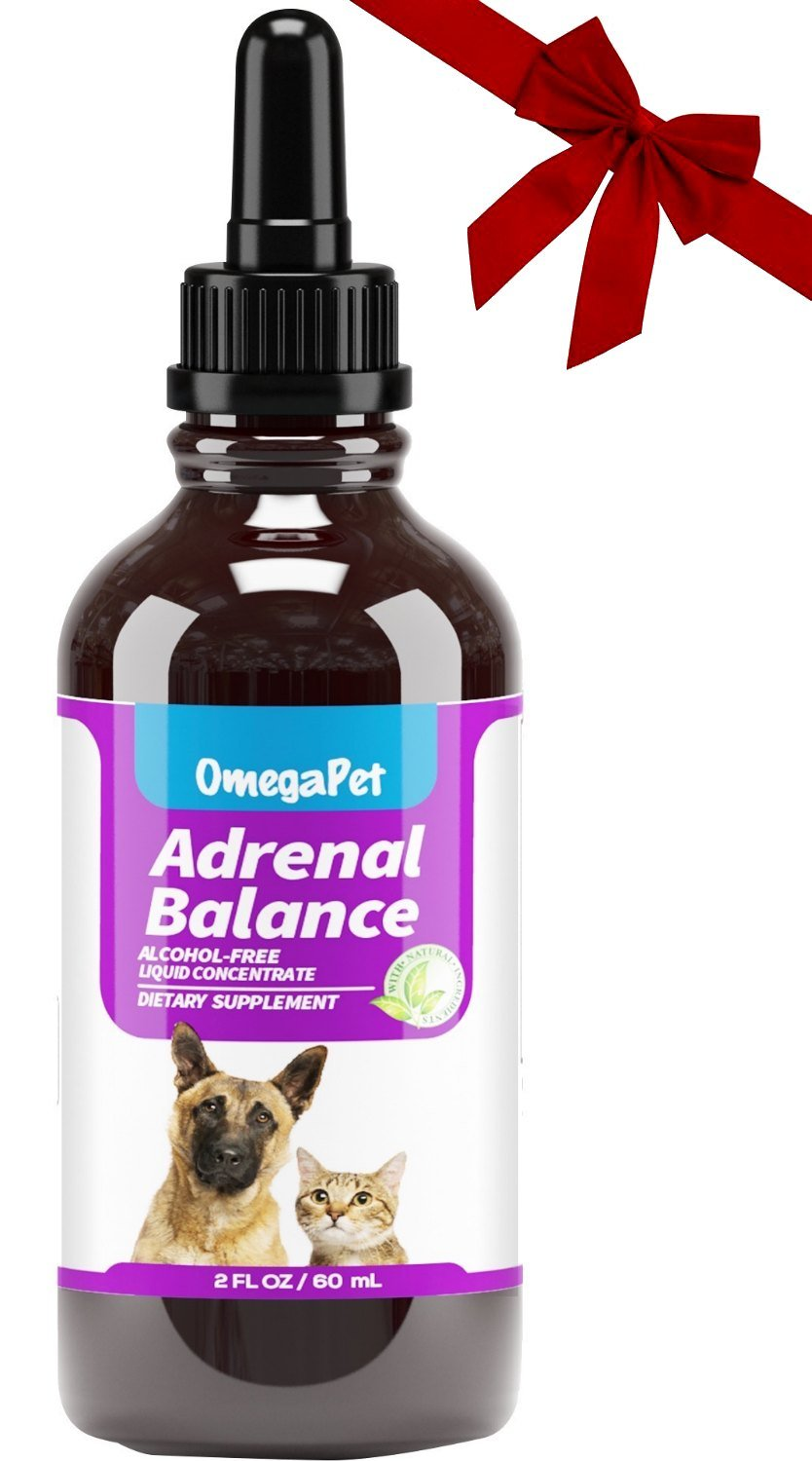 OmegaPet Best Cushings Treatment for Dogs - Adrenal Support for Dogs, Dog Cushings Drops to Make Them Happy and Healthy Again