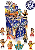 WWE Mystery Minis Mini-Figure Display Box