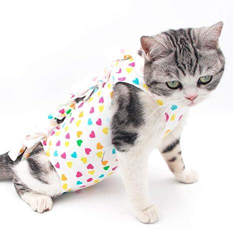 Haven shop - Traje de recuperación para Gato, Chaleco para Mascotas con esterilización de cirujanos