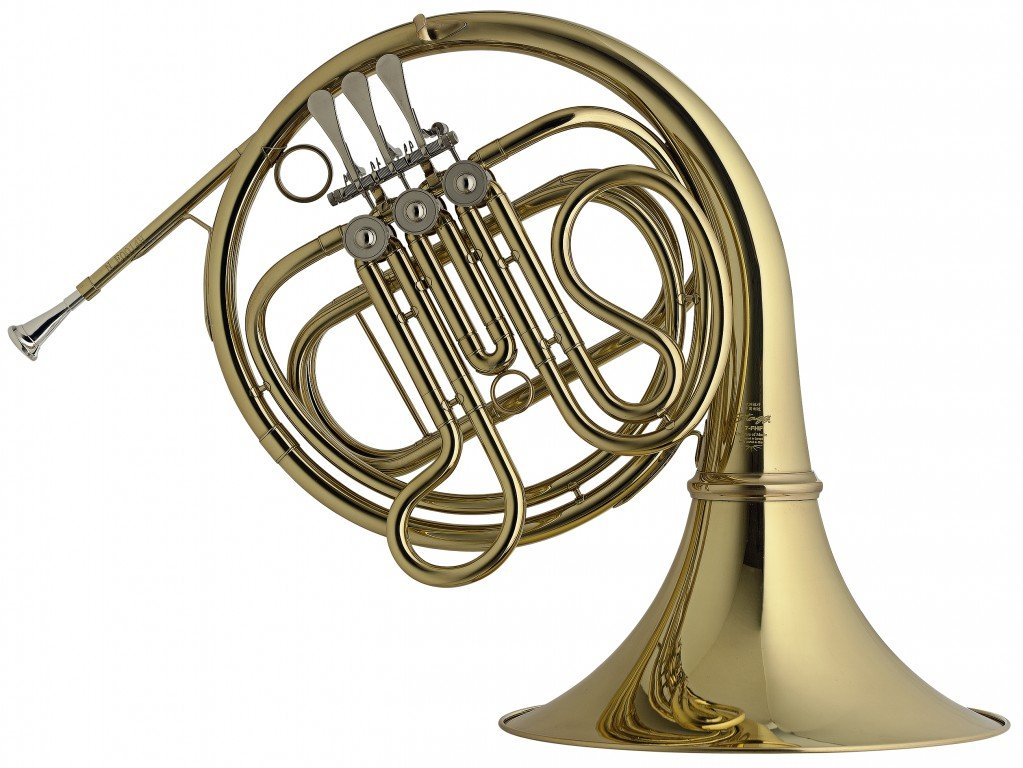 Stagg WS - HR245 F-3 Rot Valve French Horn with Form Case by Stagg