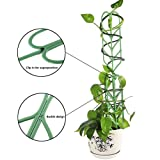 Povkeever Garden Plant Support, Y Plant Supports