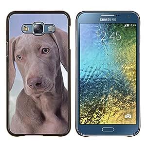 EJOOY---Cubierta de la caja de protección para la piel dura ** Samsung Galaxy E7 E700 ** --Weimaraner Vizsla Pharaoh Hound