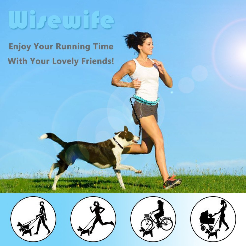Hands Free Dog Leash for Running Walking Hiking - Dual-Handle Shock Absorbing Bungee Leash - Reflective Adjustable Waist Belt Waterproof Zipper Pouch Poop Bag Holder Water Bowl