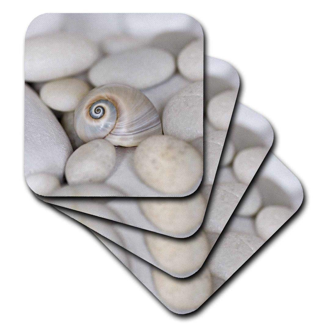 3drose Andrea Haase Nature Photography – Close Up Of Pretty Sharks Eyeシェル – コースター set-of-4-Ceramic cst_276237_3 set-of-4-Ceramic  B07BFLDZGG