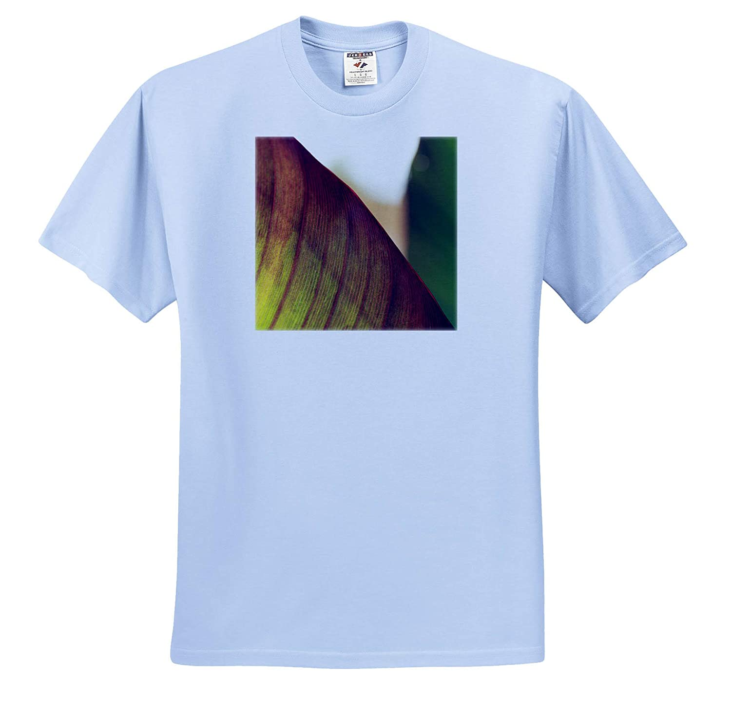 Plants ts/_320128 - Adult T-Shirt XL Macro Photograph of a Tropical Canna Lily Leaf 3dRose Stamp City