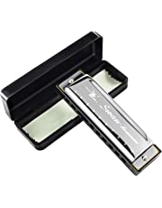 HusDow Blues Harmonica 10 Hole Harmonicas Key of C for Beginners Mouth Organ with Protective Case and Cleaning Cloth (Silver)