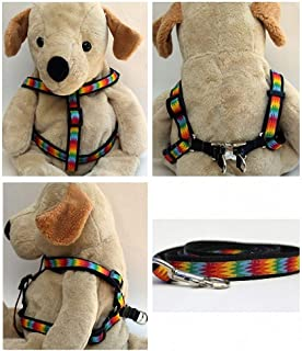 "product image for Diva-Dog 'Good Vibrations' Custom 5/8"" Wide Dog Step-in Harness with Plain or Engraved Buckle, Matching Leash Available - Teacup, XS/S"