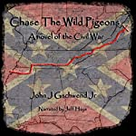 Chase the Wild Pigeons: A Novel of the Civil War   John J. Gschwend Jr.