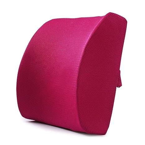 Amazon.com: FOME Almohada de apoyo lumbar, diseño ergonómico ...