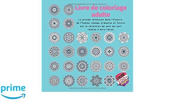 Coloriage Adulte Histoire.Livre De Coloriage Adulte La Grande Revolution Dans L