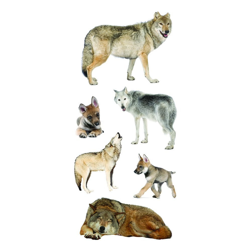 Pack of 6 Paper House Productions ST-2292E Wolf Pack Stickers 2-Inch by 4-Inch