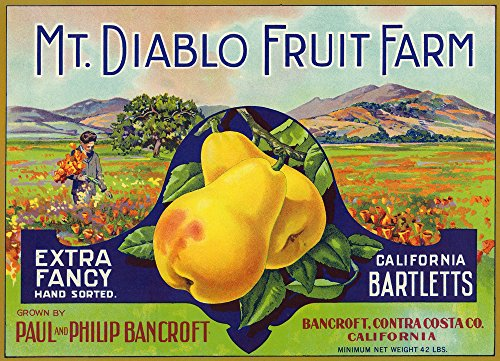 Bancroft, California - Mt. Diablo Fruit Farm Brand Pear - Vintage Label (9x12 Art Print, Wall Decor Travel Poster)