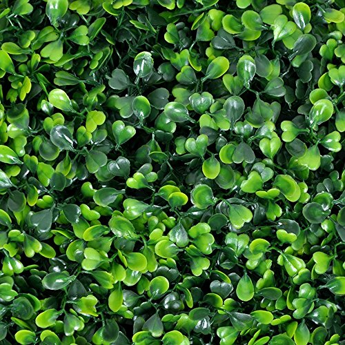 (Porpora Artificial Hedge Plant, Greenery Panels Suitable for Both Outdoor or Indoor use, Garden, Backyard and/or Home Decorations, Boxwood 20 x 20 Inch (12 pack) by e-Joy)