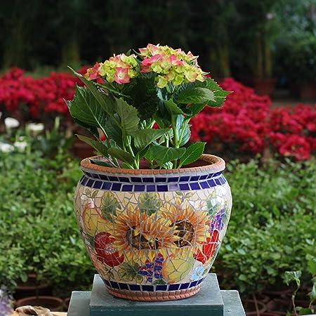Fighrh Clásica europea patio del jardín del plantador del color verde Planta Planta mosaico creativo crisol
