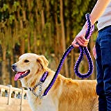 """Martingale Collar and Leash (Latest Version) CNMEI Handmade Braided Strap, Strong Pull Hook for Controlling and Training Strong Dog + Free eBook on Dog Training (M (neck 17.7"""" to 21.6""""), purple&black)"""