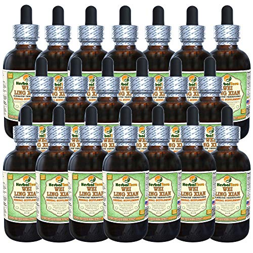 Wei Ling Xian, Chinese Clematis (Clematis Terniflora) Glycerite, Organic Dried Root Alcohol-Free Liquid Extract (Brand Name: HerbalTerra, Proudly Made in USA) 20x4 fl.oz (20x120 ml) (Best Homeopathic Medicine For Syphilis)