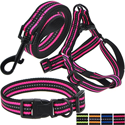 Mile High Life Night Reflective Double Band Nylon Small Animal Pet Dog Adjustable Collar, Leash, Harness or Combo Set (Large, Pink 3 Pack collar leash harness)
