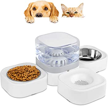 9.Capaboo Pet Food Feeder and Water Dispenser, Automatic Pet Waterer